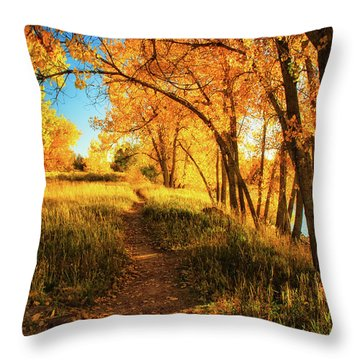 Throw Pillow featuring the photograph October's Light by John De Bord
