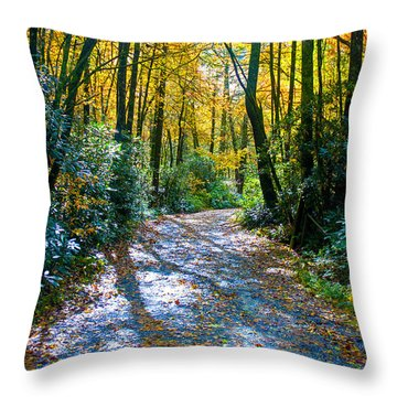 October's Path Throw Pillow by Allen Carroll