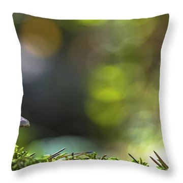 Ode To A Mushroom Throw Pillow by Mary Amerman