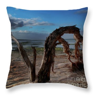 Ode To The Estuary Throw Pillow by Kym Clarke