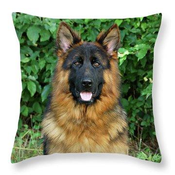 Oden Throw Pillow