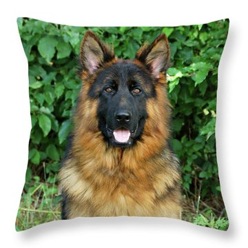 Oden Throw Pillow