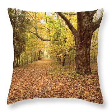 Odiorne Point State Park - Rye New Hampshire Throw Pillow by Erin Paul Donovan
