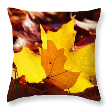 Of Light And Leaves Too Throw Pillow