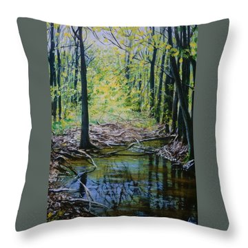 Off The Trail Throw Pillow