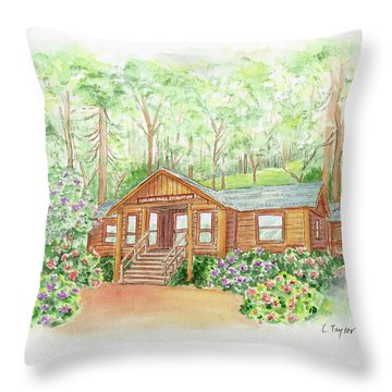 Office In The Park Throw Pillow