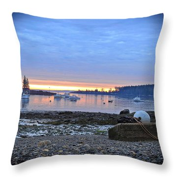 Office Of The Sea Throw Pillow