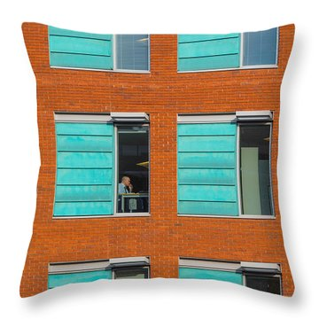Office Windows Throw Pillow