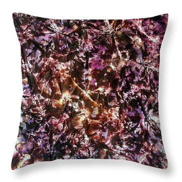42-offspring While I Was On The Path To Perfection 42 Throw Pillow