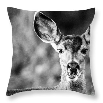 Oh, Deer, Black And White Throw Pillow