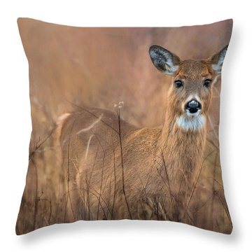 Throw Pillow featuring the photograph Oh Deer by Robin-lee Vieira