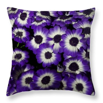 Oh Happy Day Throw Pillow by Linda Mishler