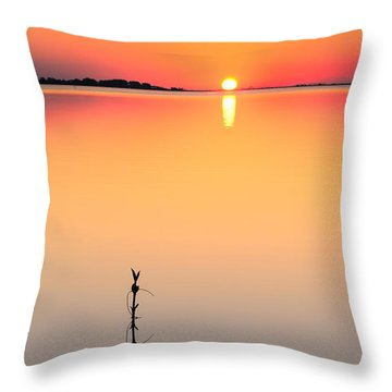 Oh, How She Makes Me Blush Throw Pillow by Craig Szymanski