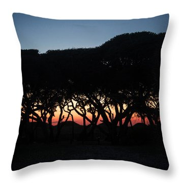Oh Those Trees Throw Pillow