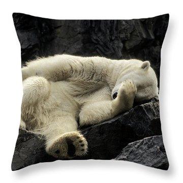 Oh What A Night Polar Bear Throw Pillow