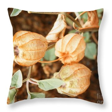 Oh What We See Throw Pillow