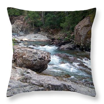 Throw Pillow featuring the photograph Ohanapacosh River by Charles Robinson