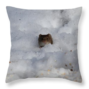 Ohhh You See Me Throw Pillow