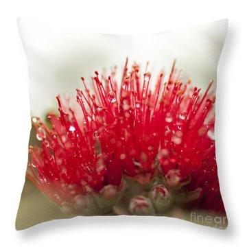 Ohia Lehua Flower Throw Pillow