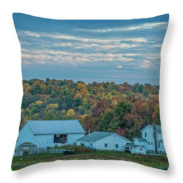 Throw Pillow featuring the photograph Ohio Farm by David Waldrop