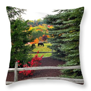 Throw Pillow featuring the photograph Ohio Farm In Autumn by Joan  Minchak