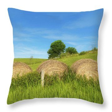 Ohio Landscape In Summer Throw Pillow