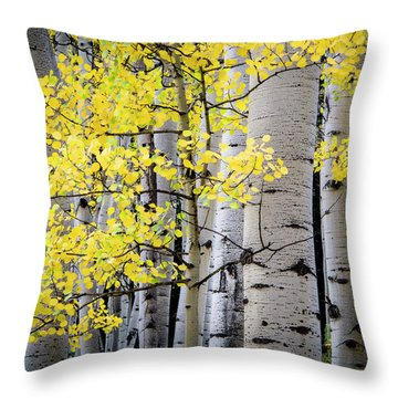 Ohio Pass Gold Throw Pillow by The Forests Edge Photography - Diane Sandoval