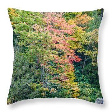 Ohio Pyle Colors - 9709 Throw Pillow