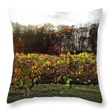 Throw Pillow featuring the photograph Ohio Winery In Autumn by Joan  Minchak