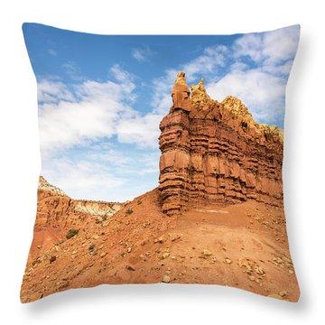 Ojitos De Los Gatos - New Mexico Throw Pillow by Brian Harig