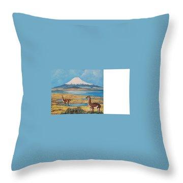Ojos Del Salado Volcano Throw Pillow