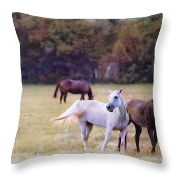 Ok Horse Ranch_1c Throw Pillow