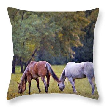 Ok Horse Ranch_2a Throw Pillow
