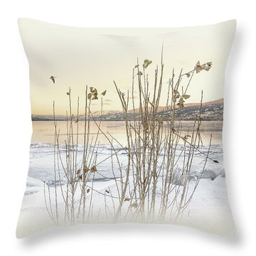 Throw Pillow featuring the photograph Okanagan Glod by John Poon
