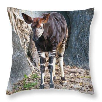 Okapia Throw Pillow