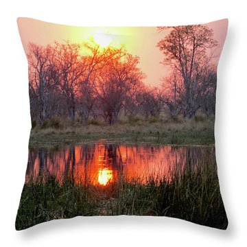Okavango Delta Throw Pillow