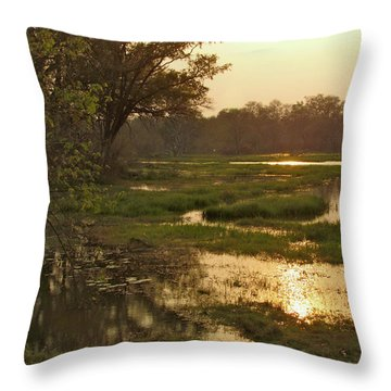 Okavango Delta Gold Throw Pillow