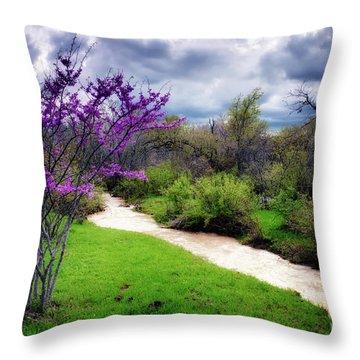 Oklahoma Spring Storm Throw Pillow by Tamyra Ayles