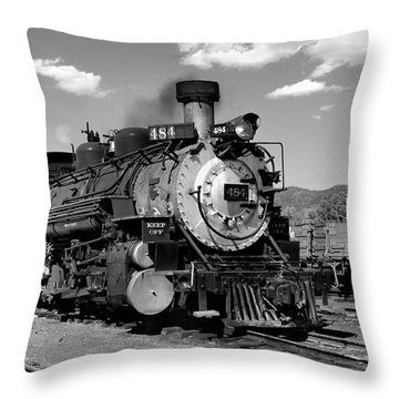 Throw Pillow featuring the photograph Old 484 I by Ron Cline