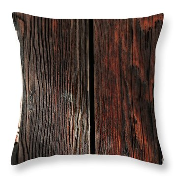 Old Amboy Grange Door  Throw Pillow