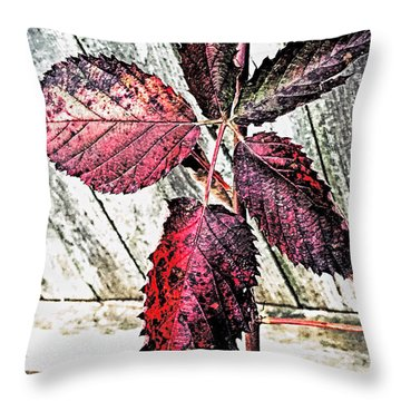 Old And  Faded Throw Pillow