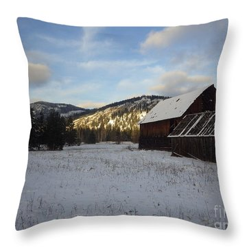 Throw Pillow featuring the photograph Old Barn 2 by Victor K