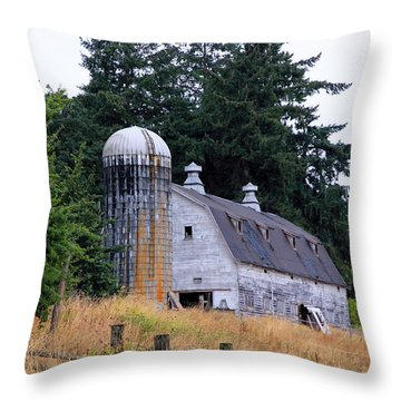 Old Barn In Field Throw Pillow