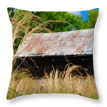 Old Barn In Roxborough Throw Pillow by Bill Cannon