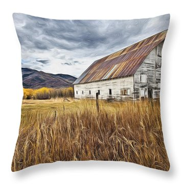Old Barn In Steamboat,co Throw Pillow