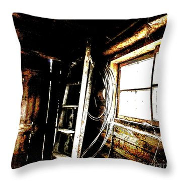 Old Barn Ladder Throw Pillow