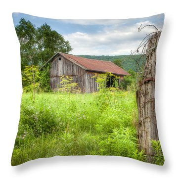Throw Pillow featuring the photograph Old Barn Near Stryker Rd. Rustic Landscape by Gary Heller