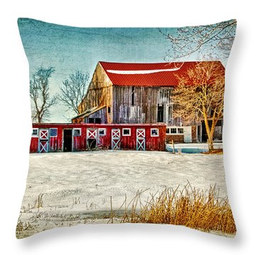 Old Barn On Forrest Road Throw Pillow