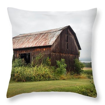 Old Barn On Seneca Lake - Finger Lakes - New York State Throw Pillow