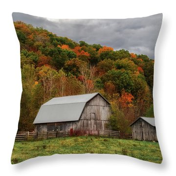 Old Barns Of Beauty In Ohio  Throw Pillow